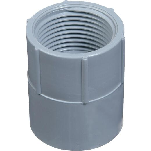 Carlon 1/2 In. Female Threaded & Socket PVC Conduit Female Adapter