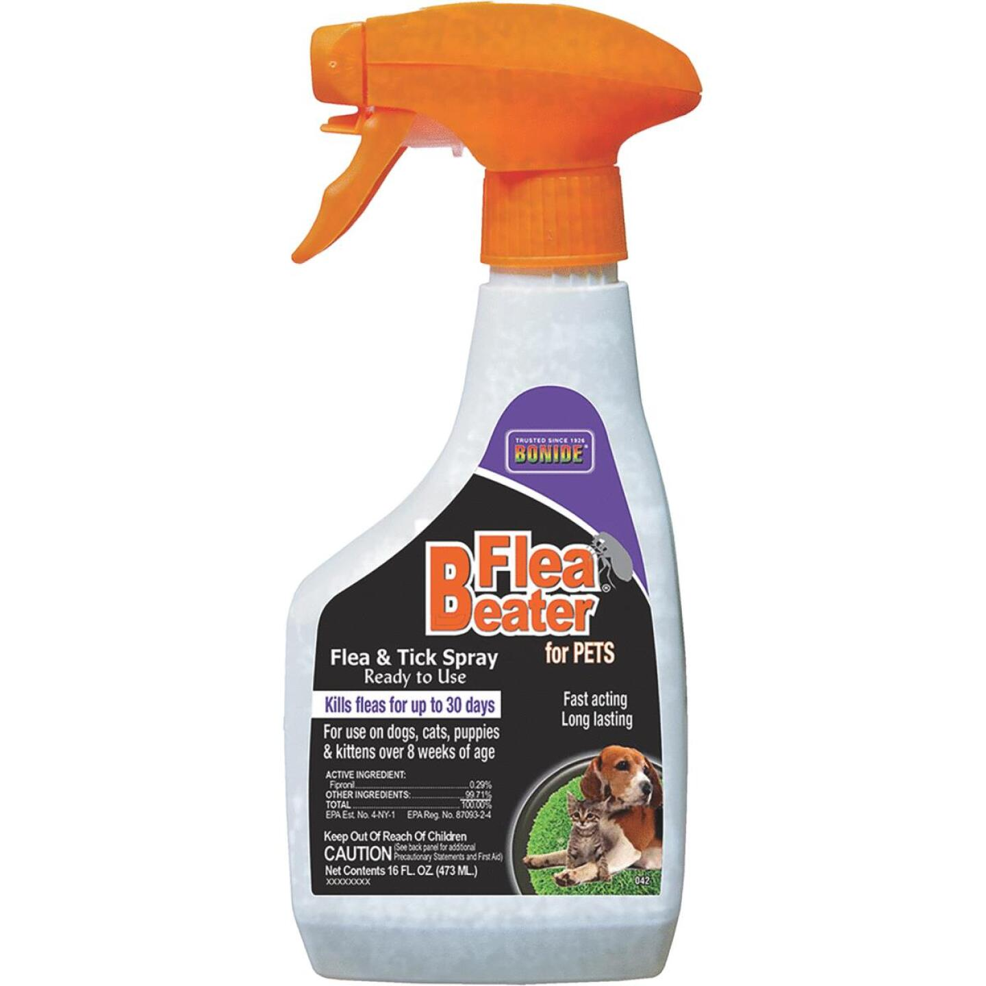 Bonide Flea Beater 30-Day 16 Oz. Flea & Tick Control Spray For Cats & Dogs Image 2