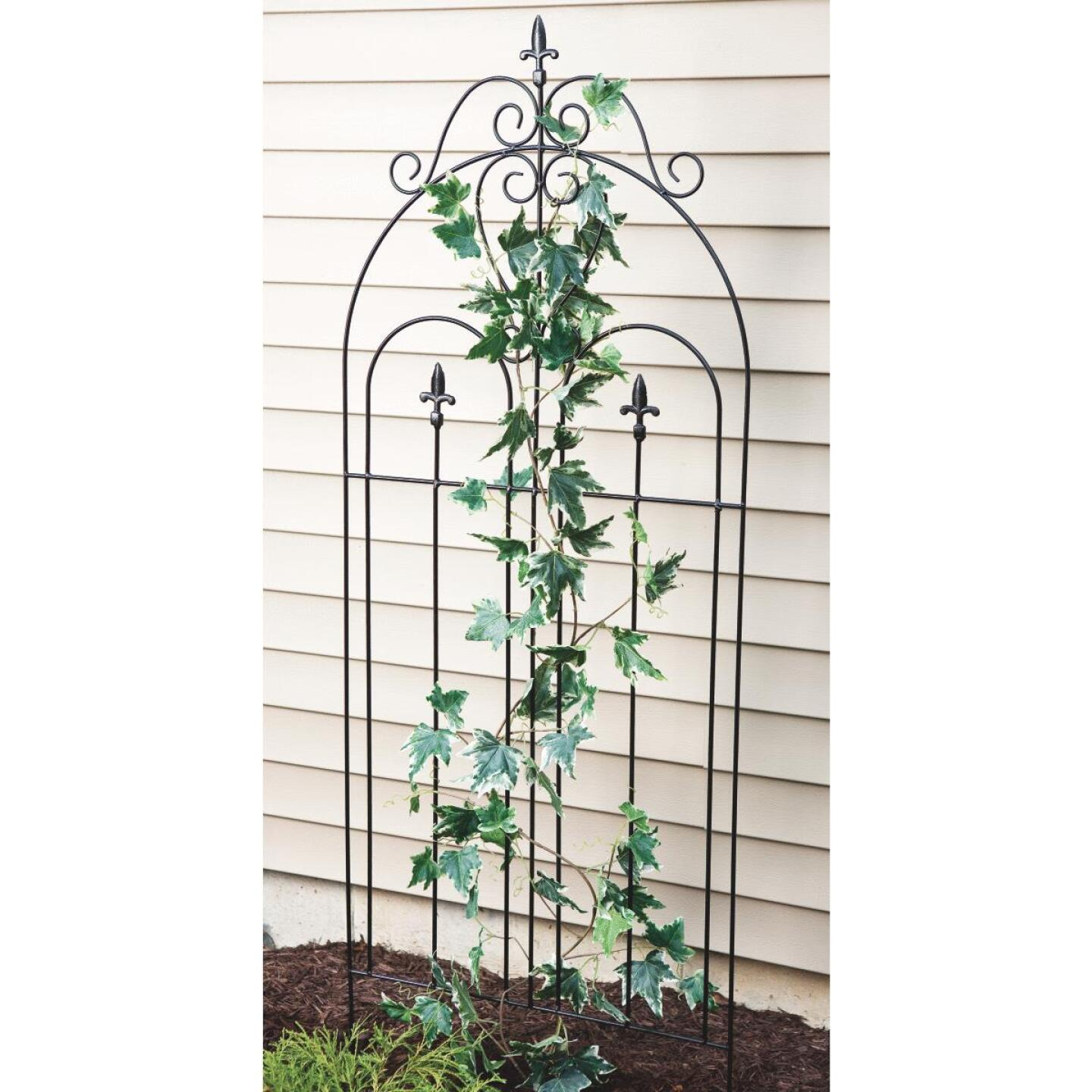 Best Garden Metal Cathedral Black Trellis Image 2
