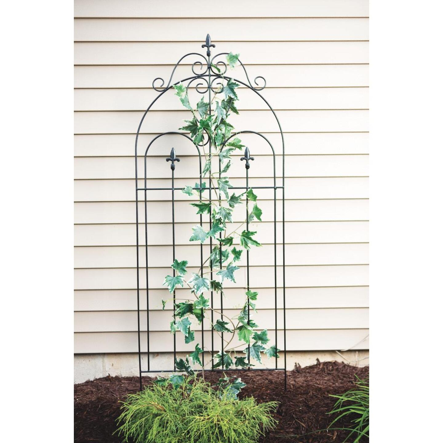 Best Garden Metal Cathedral Black Trellis Image 4